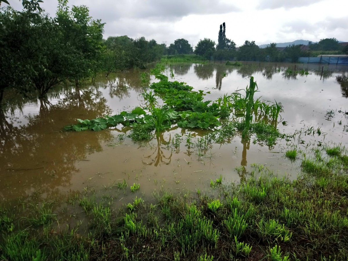 inundatii bungard 2