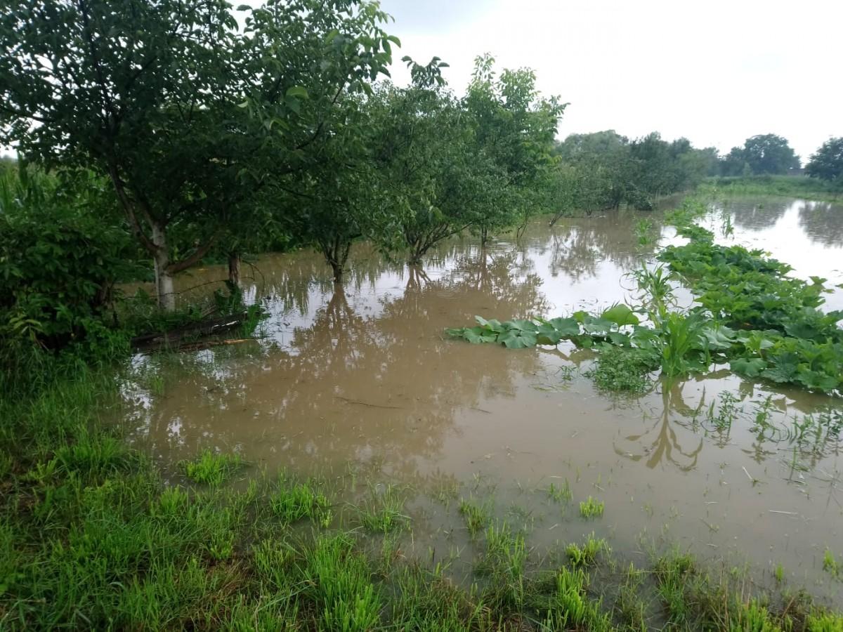 inundatii bungard