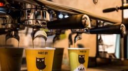 micile afaceri cafenea (7)
