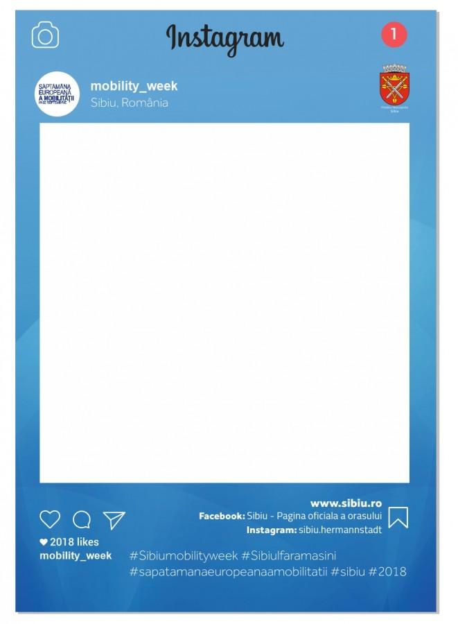 preview panou social media