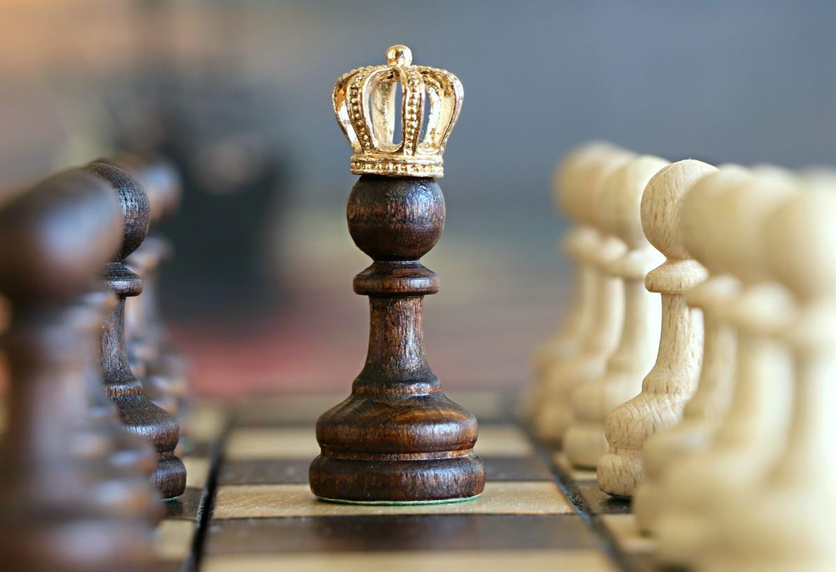 """Indiferent de rating-ul actual, înainte de a deveni """"regi"""" ai șahului, toți acești mari maeștri au pornit de la stadiul de """"pion""""."""