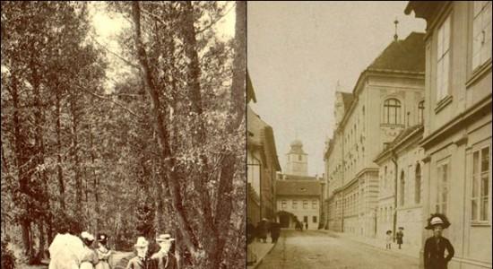 100 ani sibieni