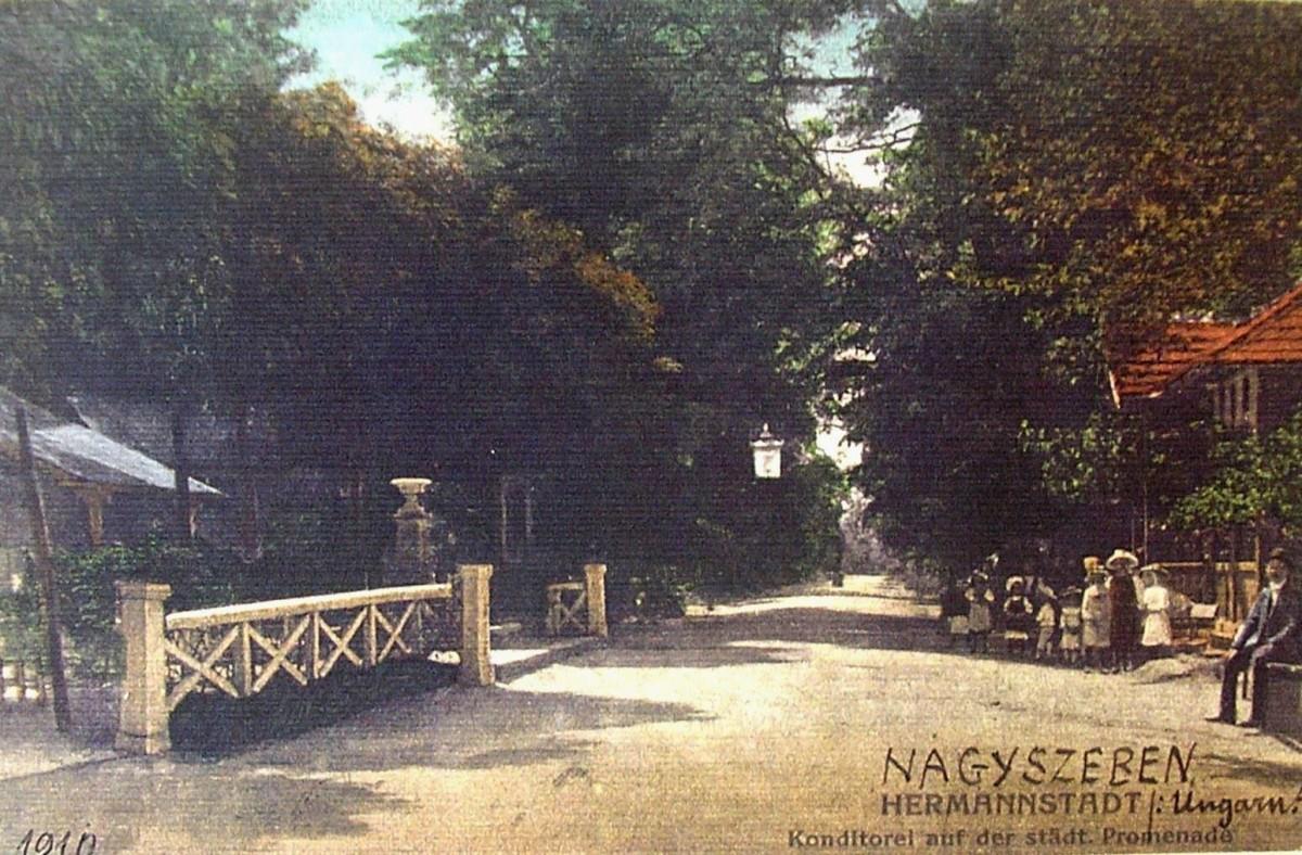 Actualul bulevard Corneliu Coposu era o zonă de promenadă