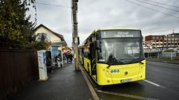 autobuze noi Tursib traseu (22)