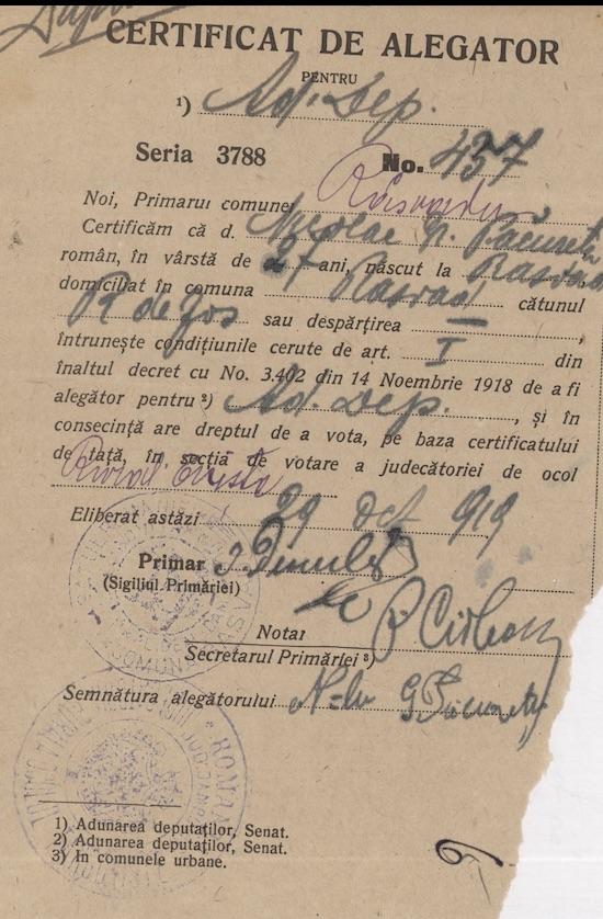 Un certificat de alegător pentru alegerile din 1919