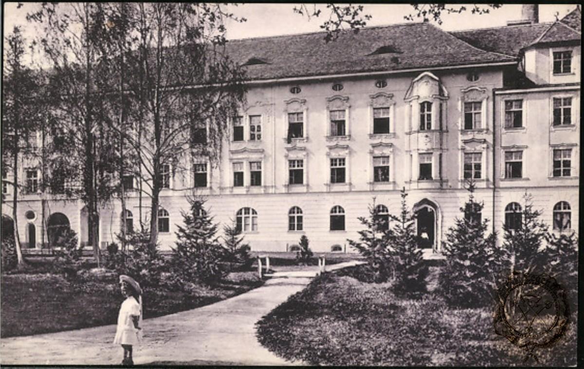 Sanatoriul - Spitalul Luther