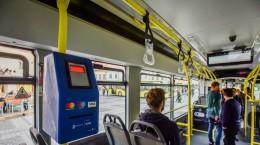 tursib autobuze (8)