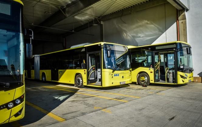 tursib femei sofer autobuz (1)