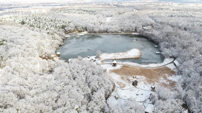 aerian_iarna_muzeul astra (1)