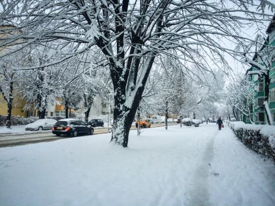 iarna deszapezire circulatie (2)