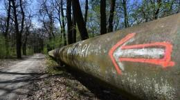 pista biciclete padure poplaca rasinari (4)