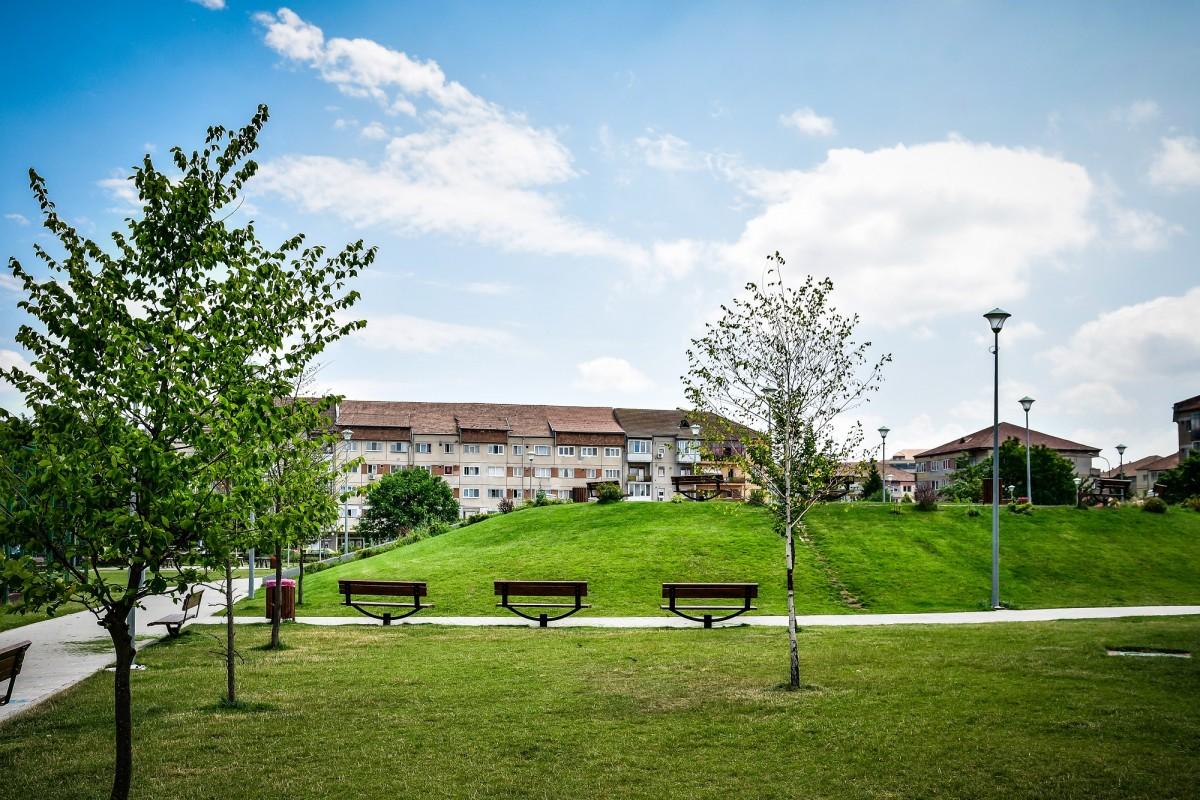 Contractul în discuție acoperă toate parcurile și spațiile verzi din Sibiu