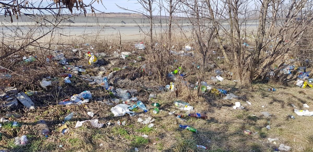 gunoaie marginea drumului 11_Fotor