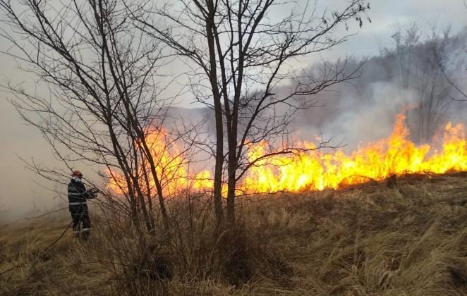 incendiu vegetatie 1