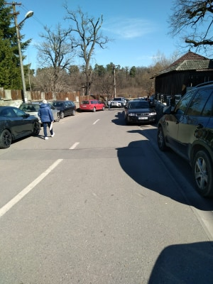 masini pe trotuar valea aurie (1)