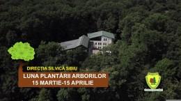 FILM OCOLUL SILVIC-LUNA PLANTARII 02_Moment2
