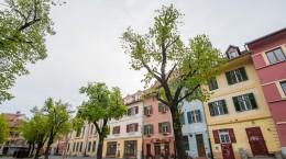 case piata huet (2)