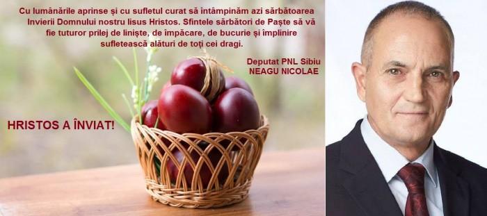 mesaj PASTE Deputat Neagu