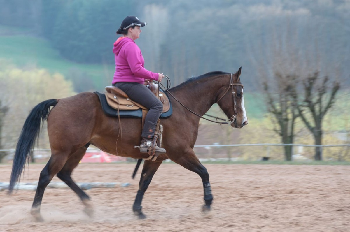 Natalie Müller și calul său, Shadow. Sursa foto: Facebook / Natalie Müller