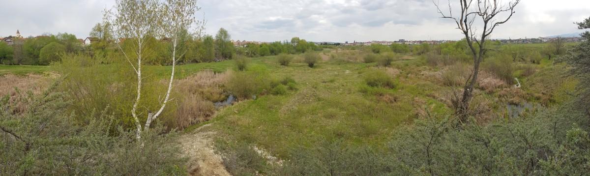 """""""Delta noastră din Sibiu"""" s-a format pe locul unei vechi balastiere"""