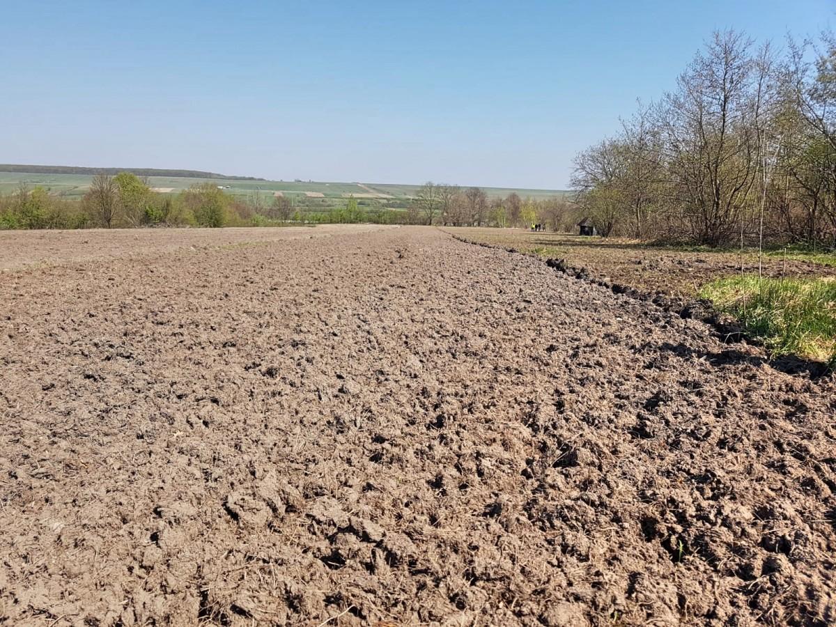 Proprietarul terenului a fost de acord, verbal, să cedeze o parte din teren pentru plantele protejate