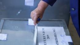alegeri europarlamentare referendum urna vot (1)