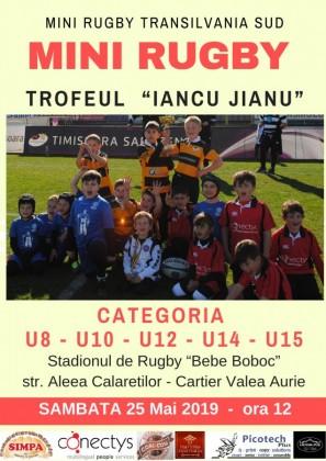rugby iancu jianu