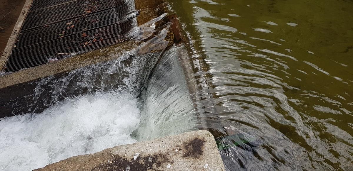 Scândurile care blochează secțiunea debitului de servitute au rolul de a dirija mai multă apă către microhidrocentrală