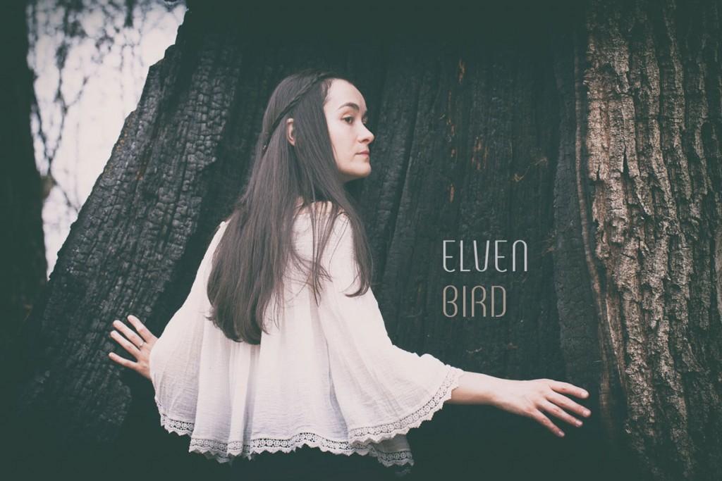 Elven-Bird