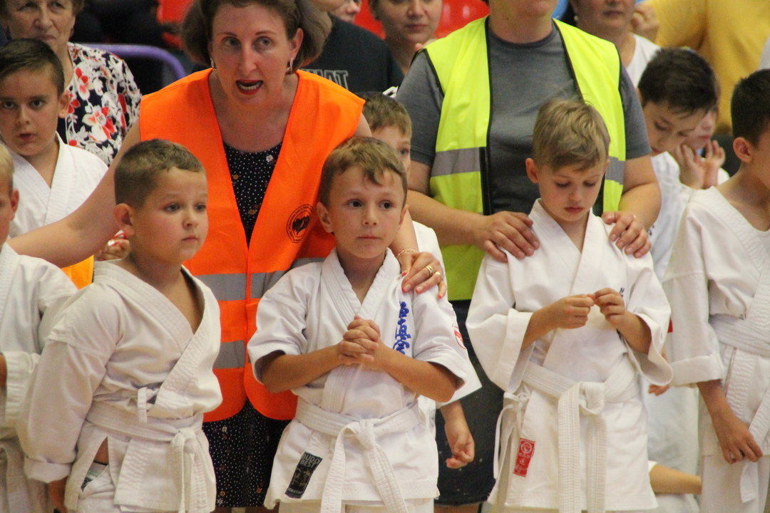 cupa internaționala de karate