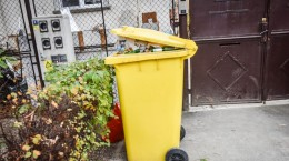 colectare selectiva pubele gunoi soma (4)