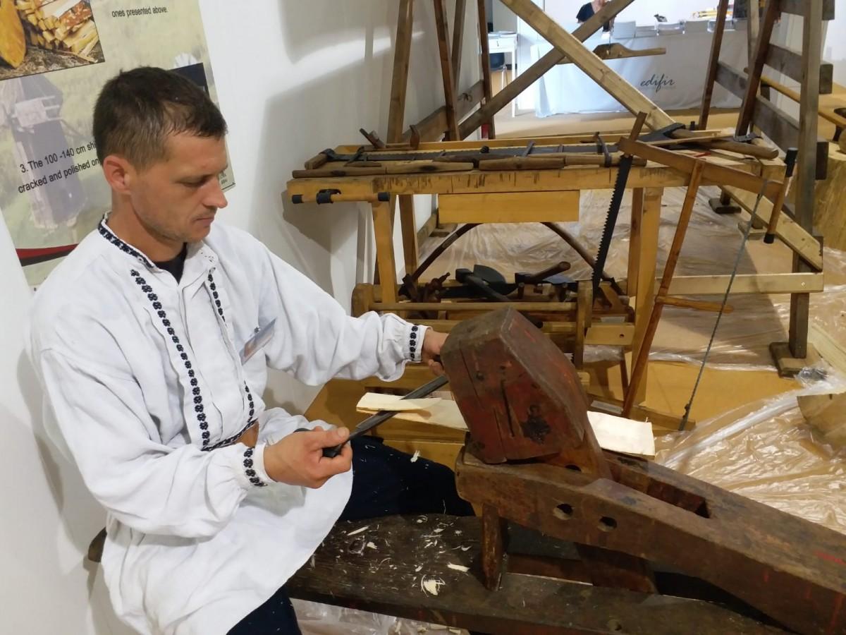 Muzeul ASTRA_Italia (2)