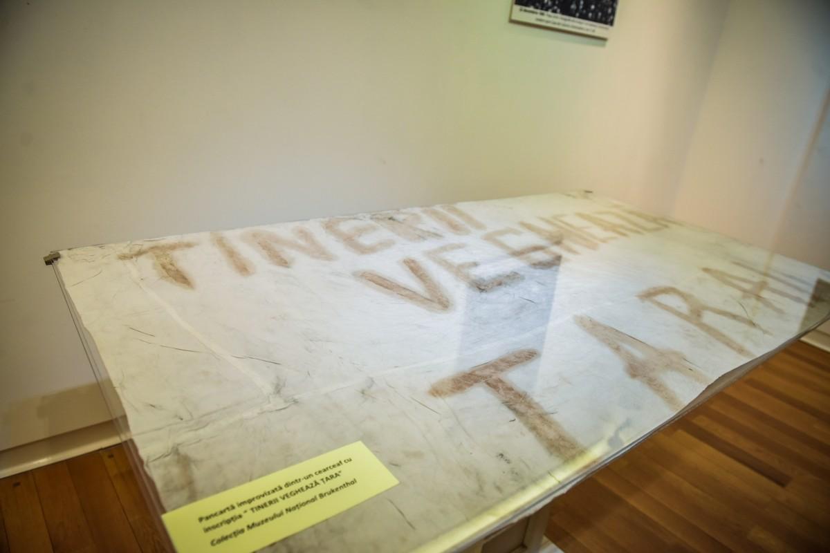 muzeu brukenthal revolutie (24)