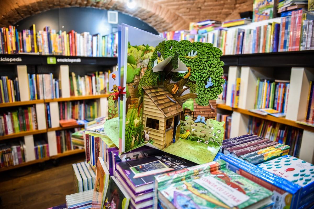 carti librarie humanitas copii (9)