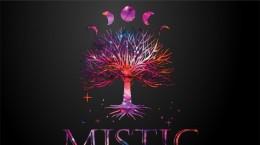 Afis Mistic 2020