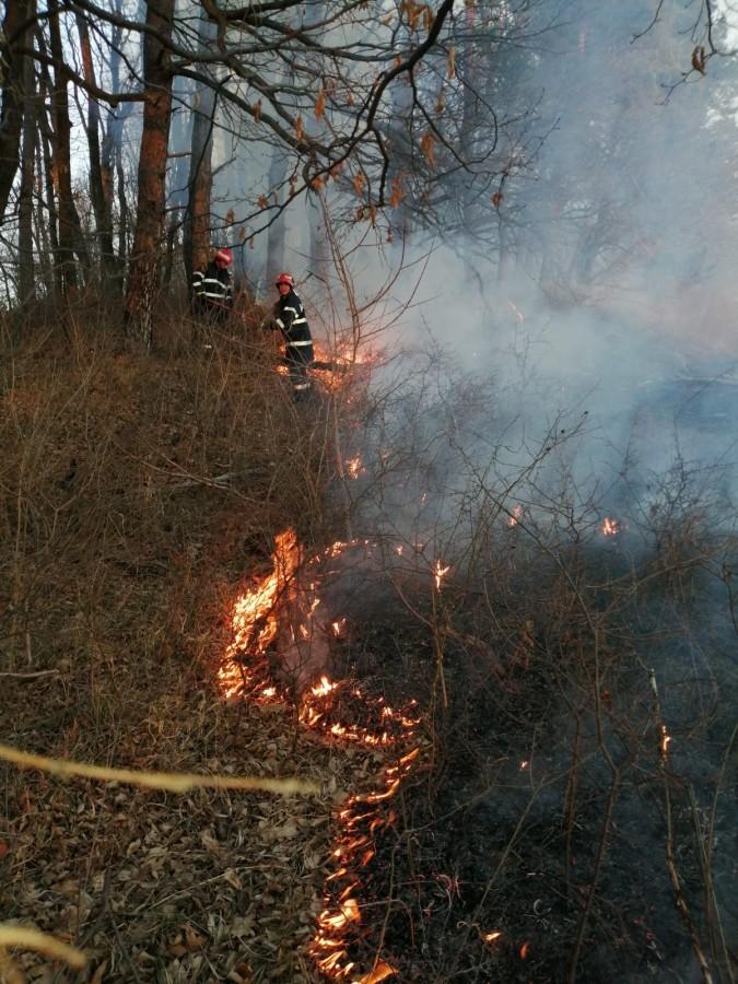 ISU incendiu vegetatie pompieri (2)