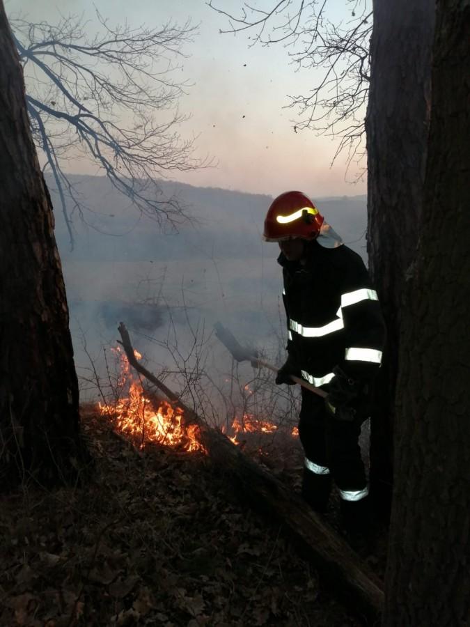 ISU incendiu vegetatie pompieri (3)