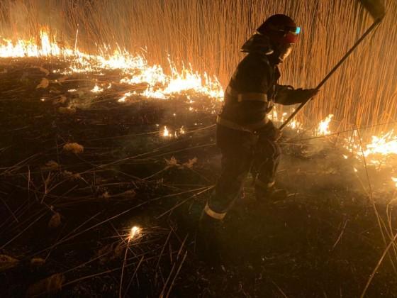ISU incendiu vegetatie pompieri (5)