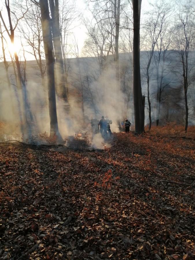 ISU incendiu vegetatie pompieri (6)