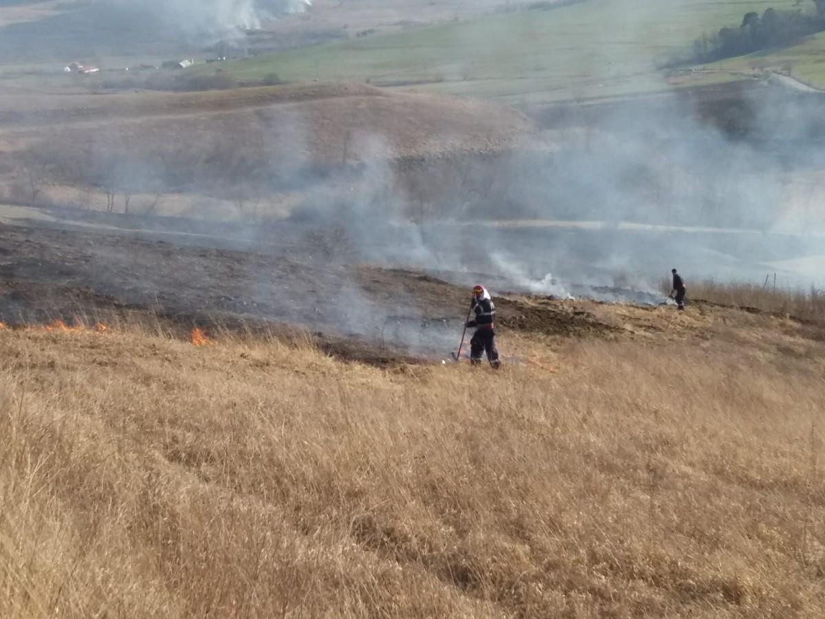 ISU incendiu vegetatie pompieri (7)