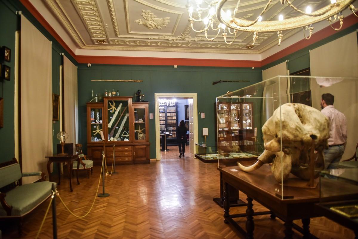 muzeu brukenthal coronavirus (20)