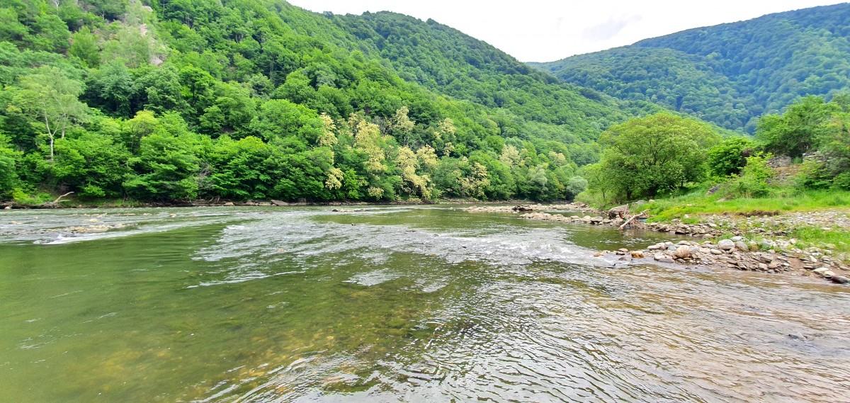Repezișurile Oltului - cum sunt cele de la Lotrioara - vor dispărea sub apa stătută a lacurilor de acumulare