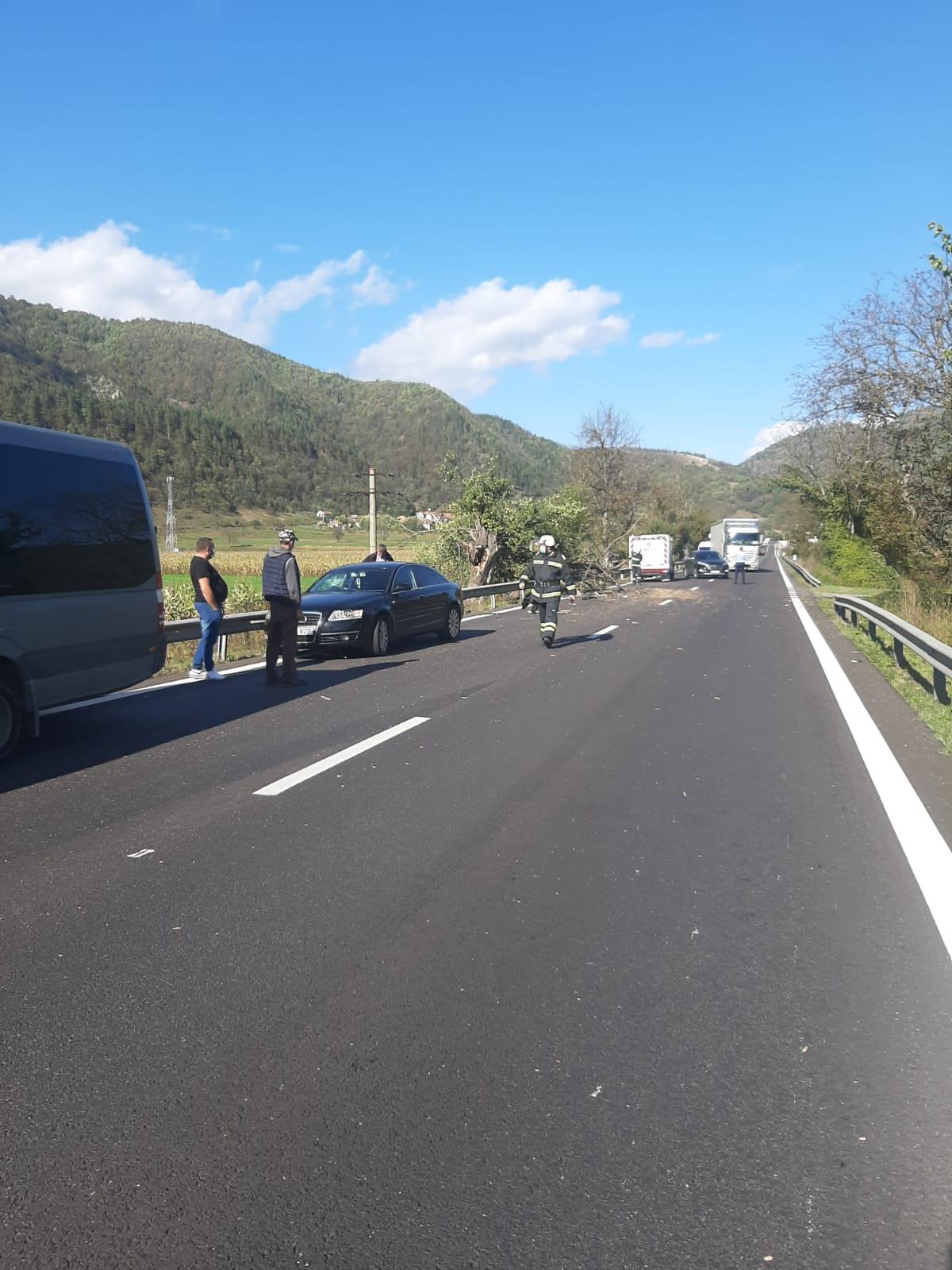 Un copac a căzut pe două mașini, pe Valea Oltului. Traficul este îngreunat