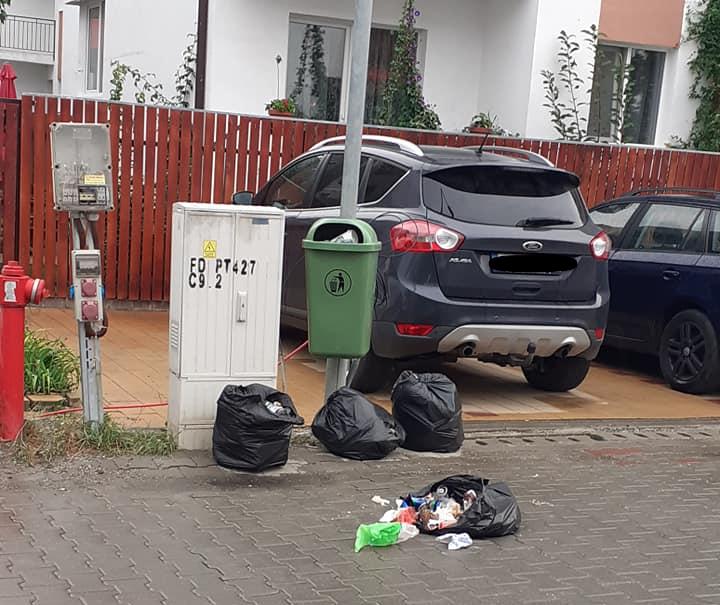 Mobilizare în Cartierul Arhitecților pentru a găsi un locatar care aruncă gunoiul pe jos. A fost sesizată Poliția