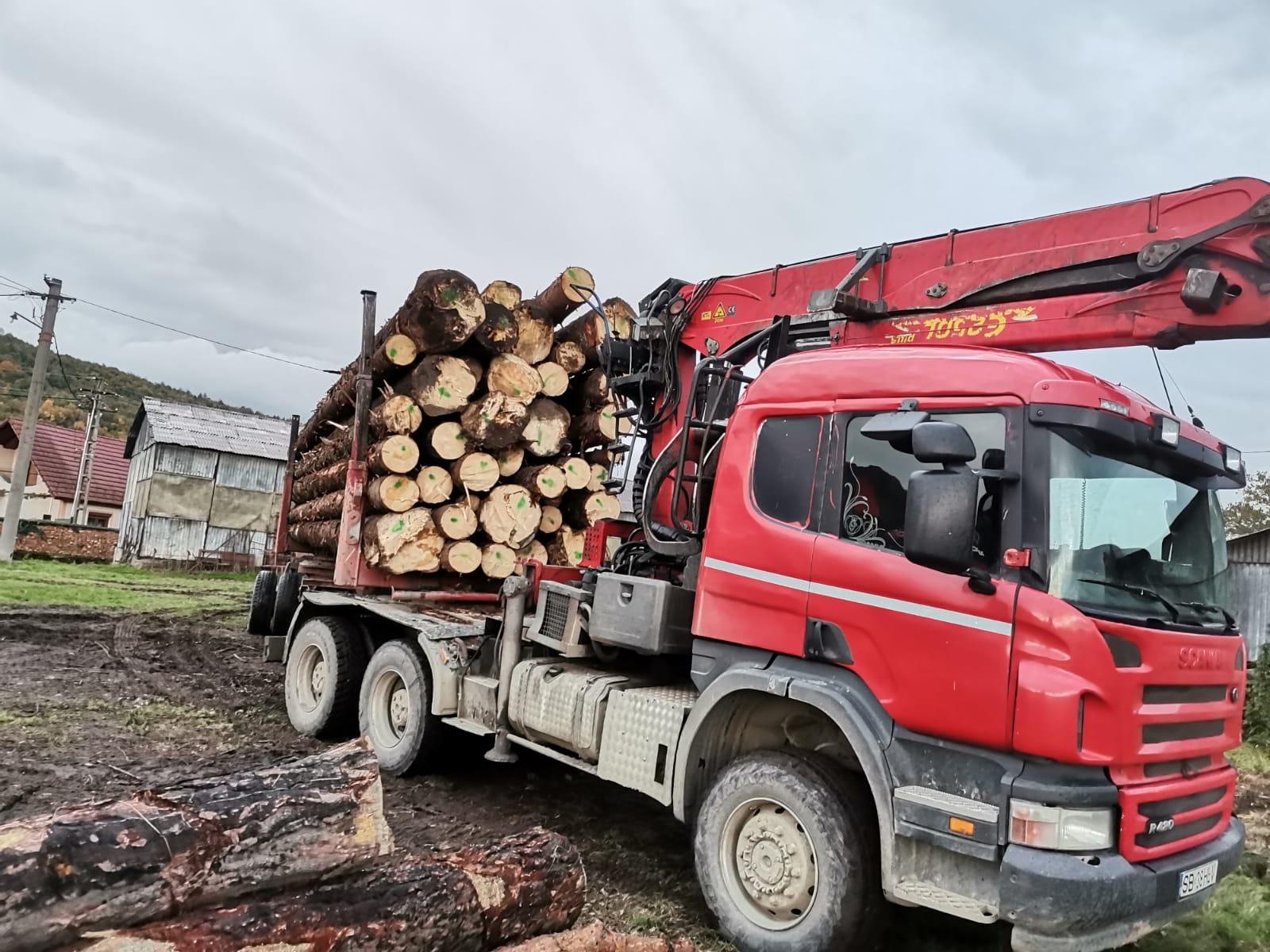 Cum se fură lemnul din pădure. Polițiștii au prins un sibian care efectua un transport multiplu, pe baza aceluiași aviz