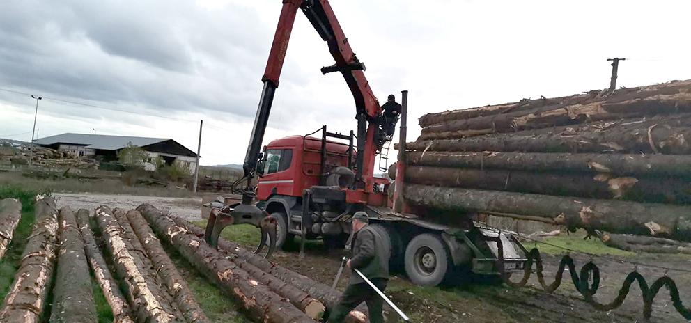 Polițiștii sibieni au confiscat un tractor și o remorcă folosite la transportul ilegal de lemn