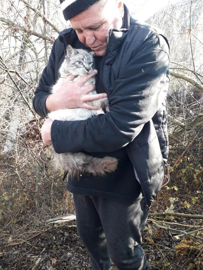 Pompierii din Dumbrăveni au salvat o pisică după ce a căzut într-un tub metalic