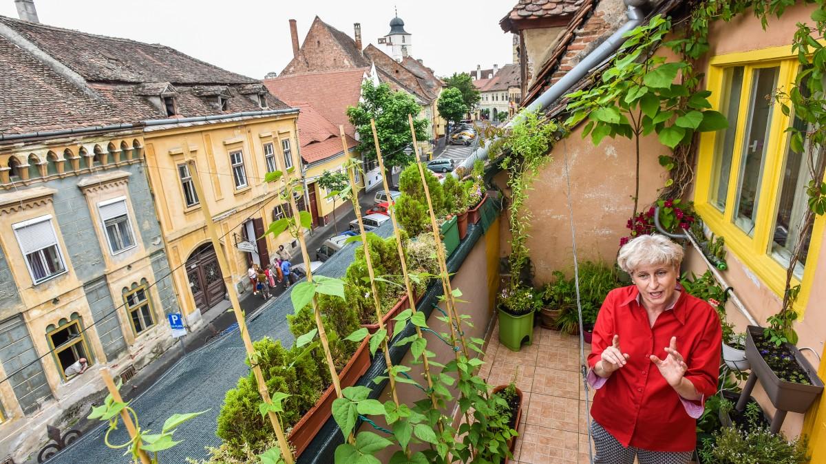 """Cele mai frumoase și sănătoase grădini de la oraș: una la doi pași de centru și una cu """"capcane-borcane"""""""
