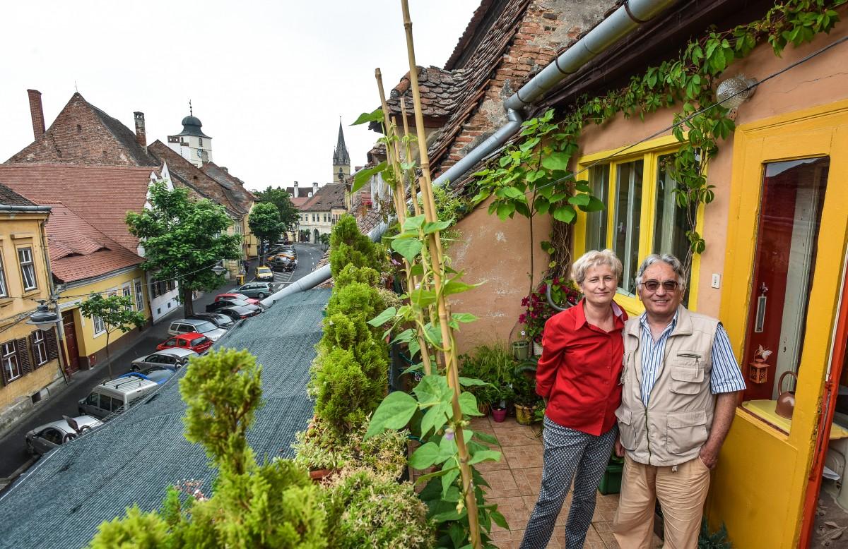 Grădina mea de la oraș. Un proiect pentru sibienii care își transformă balconul în grădină