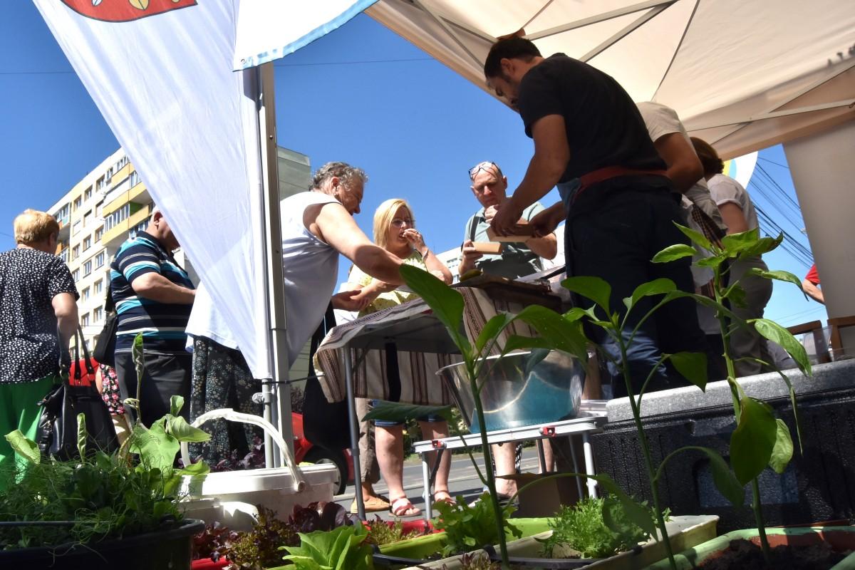 VIDEO Peste 1.000 de sibieni au primit semințe pentru propria lor grădină de la oraș